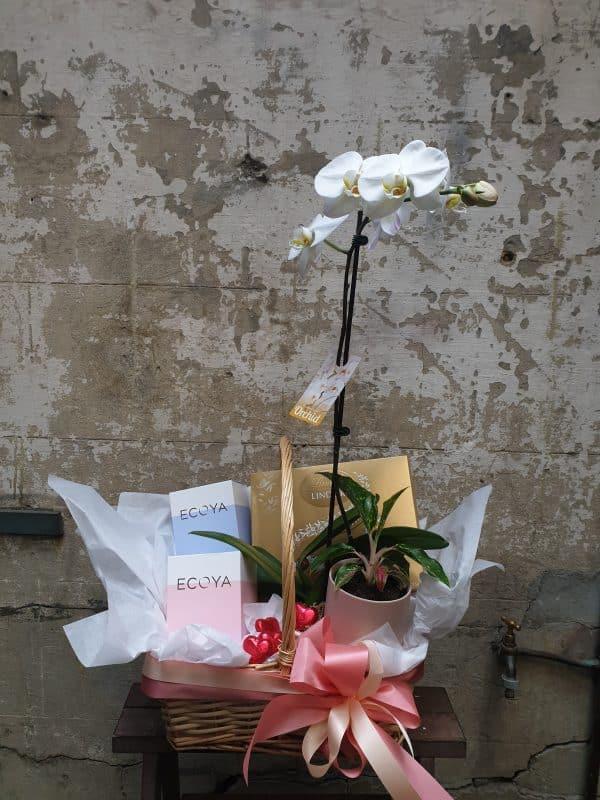 Florist Northcote Florist Preston Florist Reservoir Florist Fawkner Florist Pascoe Vale Florist Brunswick